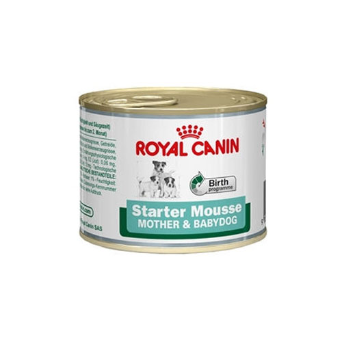 RC Starter Mousse, 195g Wet