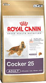 RC COCKER SPANIEL 12kg