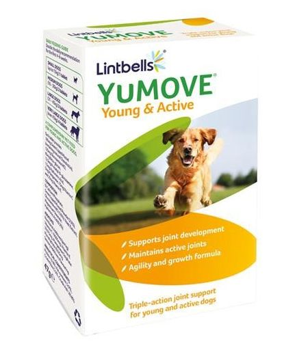 YuMOVE Young and Active 60 tabl, Lintbells