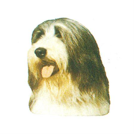 Hunddekal - Bearded collie (huv)